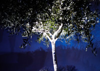 HighRes-John Doyle lighting 09