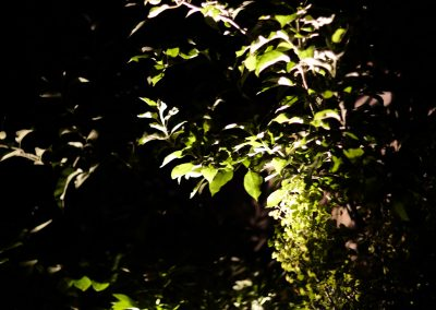 HighRes-John Doyle lighting 05